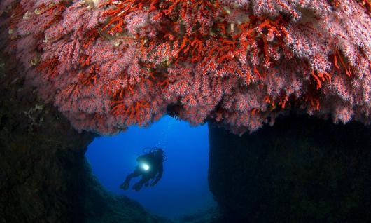 Plongée à la grotte des farillons