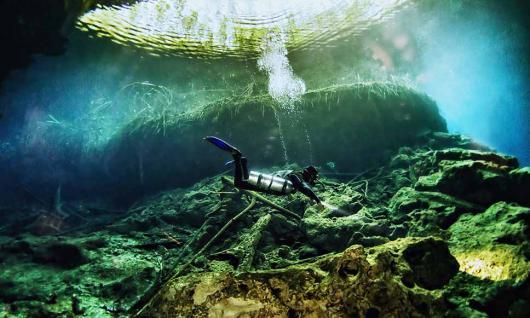 plongée cénotes - Mexique